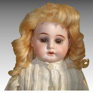 Horseshoe Mark German Bisque Head 18 Inch Doll on Kid Body, Pretty Dress