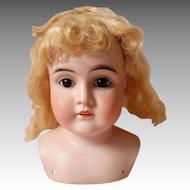 Kestner Doll Head in Original Box - Open Closed Mouth