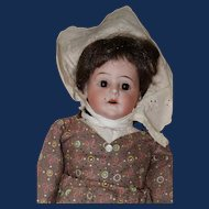 Pioneer Girl, 1899 German Bisque Head Armand Marseille Doll, Cloth Body
