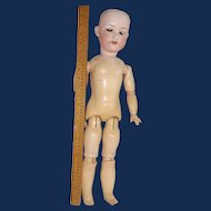 Walking German Bisque Doll, AM 390 - 23 Inch - Repair Parts