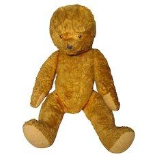 "Golden Bear 25"" W / O Ears Jointed Needs TLC"