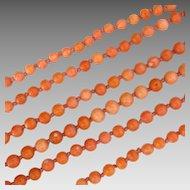 A daring and rare long natural Coral beads Sautoir necklace