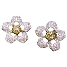 Champagne Diamonds Flowers Yellow White Gold Fashion Studs Earrings