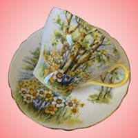Scenic Shelley cup and saucer