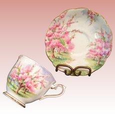 Vintage Royal Albert  Cup & saucer, Blossom Time