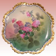 Gem of a vintage Bavarian handpainted plate
