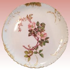 Early French wild roses Plate
