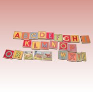 Vintage rare Alphabet animal  Blocks with removable letters