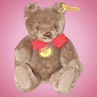 Nice Little 7 Inch Brown Steiff Bear