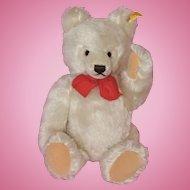 White Steiff Fully Jointed Teddy Bear