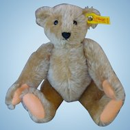 Steiff Mohair Margaret Woodbury Strong Museum Bear