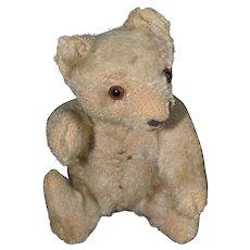 Small 1955 Steiff Fully Jointed Mohair Teddy Bear