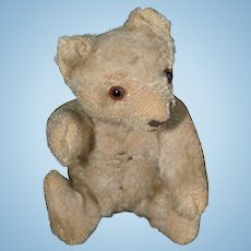 Small 1955 Steiff Fully Jointed Mohair Teddy Bear