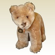 Cute Steiff Mohair Swivel Neck Walking Bear Cub