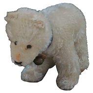 Darling Little Steiff Mohair Polar Bear Cub