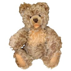 Steiff Zotty Jointed Bear with Frosted Mohair