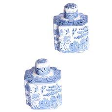 A pair of nineteenth Century tea caddies