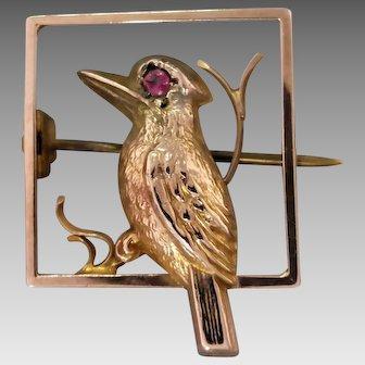 Antique Edwardian 9K GoldAustralian Kookaburra Brooch with Pink Gem Eye