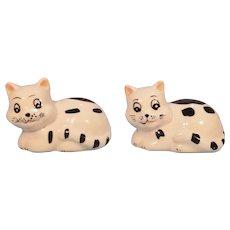 Ceramic Cat Salt and Pepper Shakers