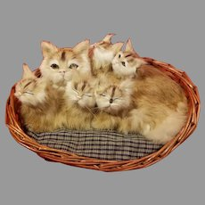 Mother Cat and Her Kittens in a Basket