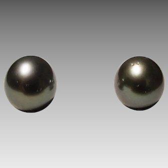 Tahitian Black Pearl Earrings Simple Studs 9.5 MM 14K W-Gold - Vintage Old Pearls