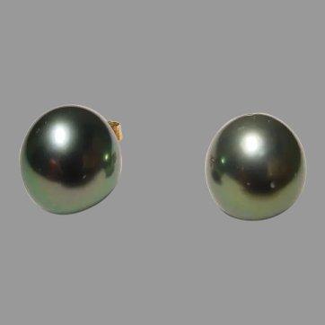 Rare Tahitian Black Pearl Earrings 12 MM 18K -Simple Studs