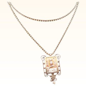Antique Victorian  Tri Color 14 kt. Gold Owl  Locket and Necklace          C. 1880