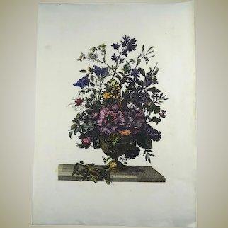 Jean Baptiste Monnoyer (1636-1699); Large garland of flowers, copper engraving hand coloured