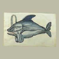 Cristoforo Coriolano / Adrovandi - Large folio woodcut - MONSTER ORCA Whale - 1638