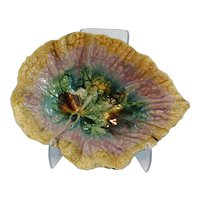 Antique Majolica Begonia Plate, Etruscan