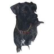 Labrador Retriever Dog Original Pastel Drawing