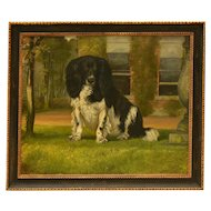 King Charles Spaniel Dog Portrait Oil Painting