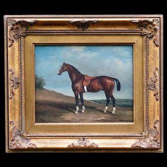 English School Race Horse Oil Painting, C Harrison