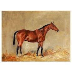 English Racehorse Portrait Oil Painting, E W