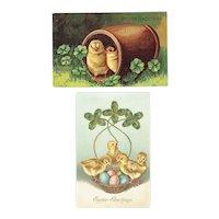 Vintage Postcards Easter Set Baby Chicks in Barrel and Chicks In Basket With Shamrocks