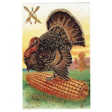 Vintage Postcard Thanksgiving Day Huge Turkey On A Cobb Of Corn