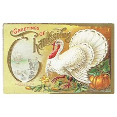 Vintage Turkey Postcard Greetings of Thanksgiving