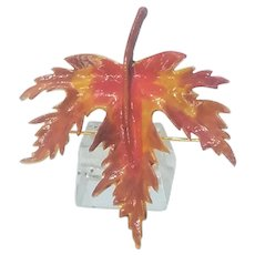 Vintage Enamel Fall Colored Maple Leaf Pin