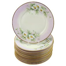 12 Piece Lot Hutschenreuther Hand-Painted Porcelain Dishes Daisy Pattern