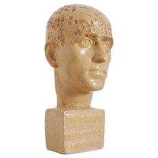 1930s Rare Art Deco Head of a Man for NEOSKOPIE Psycho-Diagnostics by DURVILLE-SCHARMANN