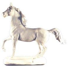 Kaiser Porcelain stallion figurine, signed, limited edition