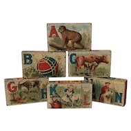 Antique 1890's ABC's Alphabet Wooden Picture Blocks Great Lithos