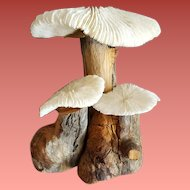 Vintage Natural Wood Shells or Dried  Mushrooms Fairy Garden Sculpture