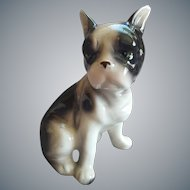 Boston Terrier Puppy Porcelain Figure Japan 1955