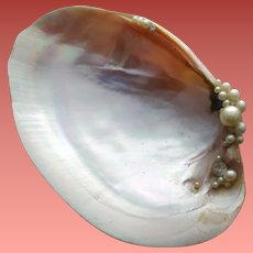 Unique Vintage Trinket Dish Real Shell Faux Pearls