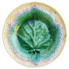 Etruscan Majolica Plate 8-3/4 Inches