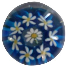 Beautiful Blue with White Daisies Paperweight