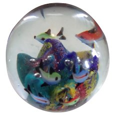 Large and Beautiful Fish and Coral Paperweight