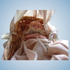Sweetest Little Celluloid German Baby in Canope Crib