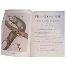 1890 Friend and Foe From Field and Forest, Natural History of Mammalia Mammals, Miller & Company